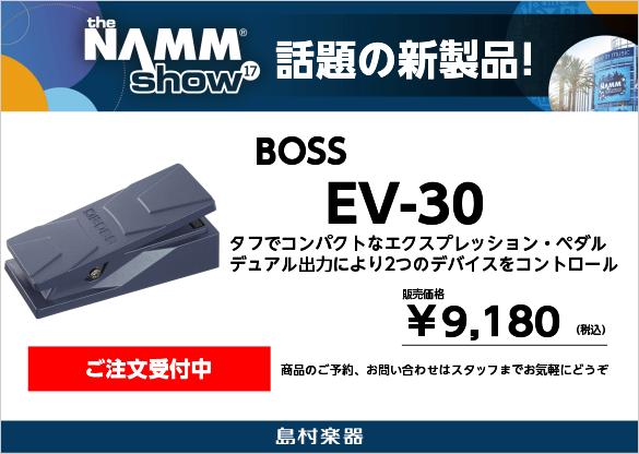 BOSS EV-30