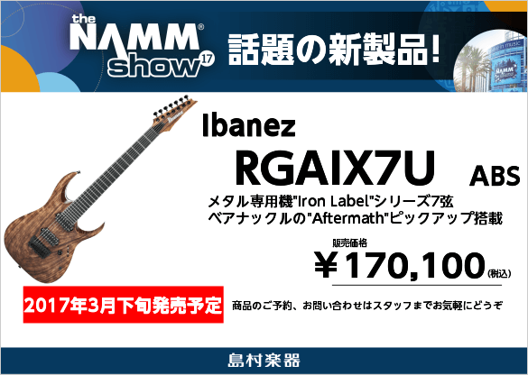 Ibanez RGAIX7U ASB