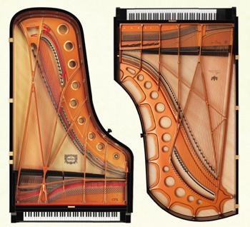 音色:CFX、べーゼンドルファーを含む 『18種類のピアノ音色』