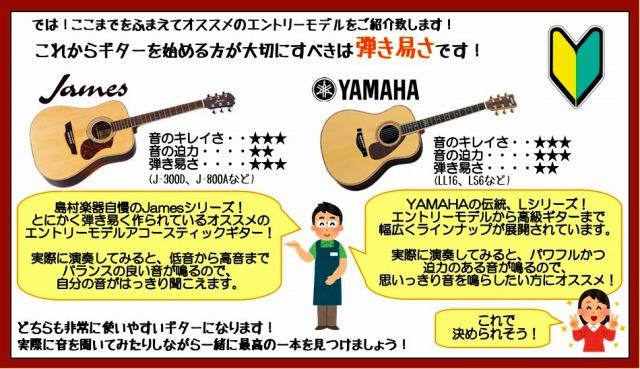 おすすめの入門者ギター