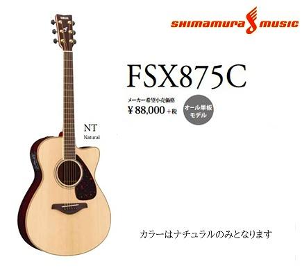 FSXの最高峰モデルです