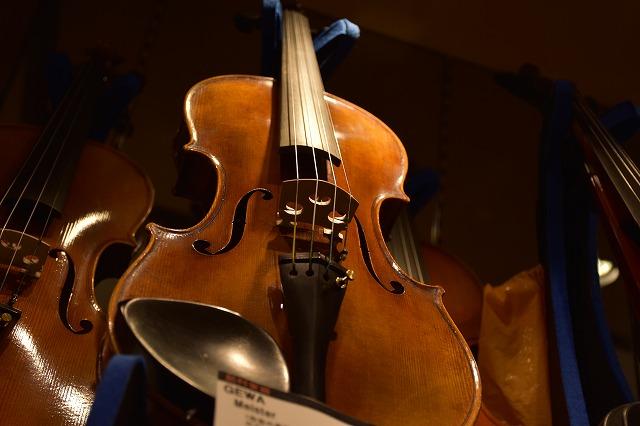 弦楽器コーナ�