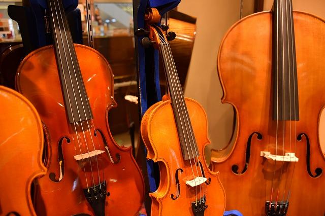 弦楽器コーナー
