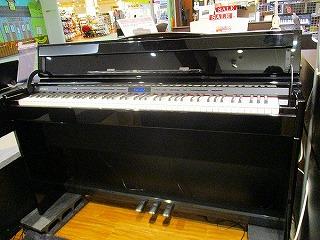DP603
