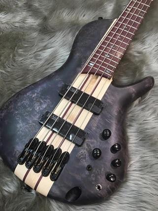 SRSC805_Ibanez (Bass)