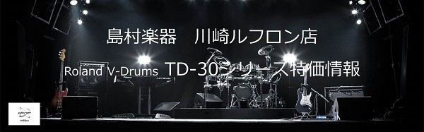 TD30SALE