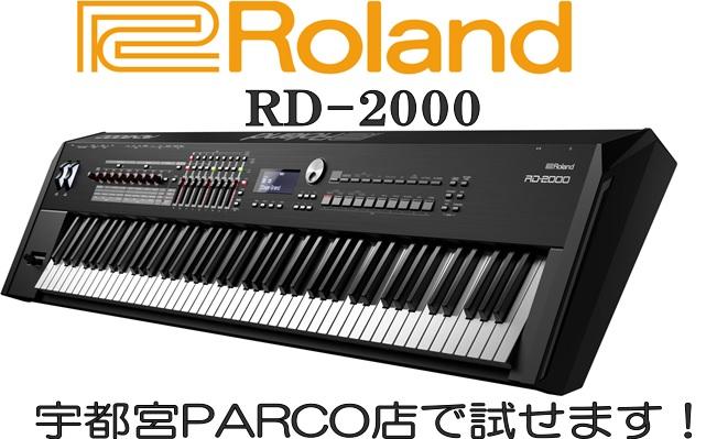 RD-2000試せます!