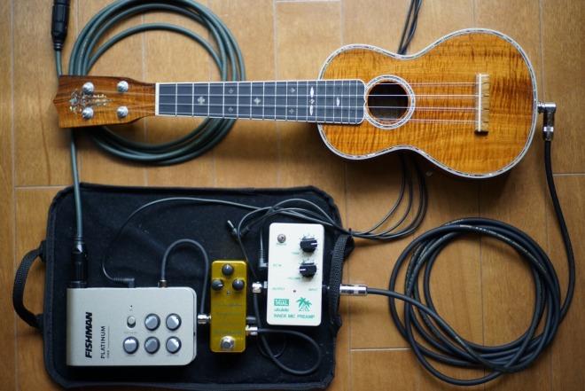 TRIAL INNER mic preamp