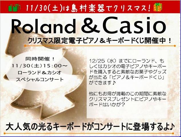 Roland・CASIOコンサート