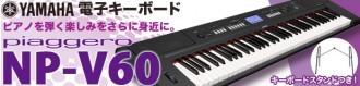 NP-V60