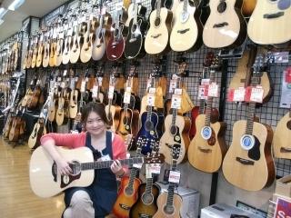 イオンモール成田店 アコースティックギターコーナー