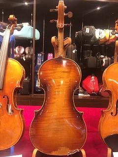 おすすめバイオリン裏板