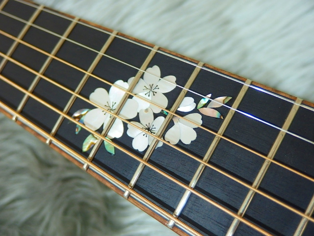 SJB-SAKURA 指板桜