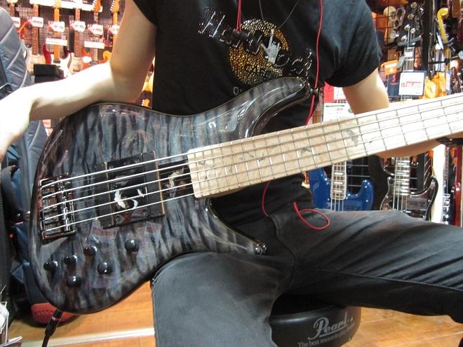 sugi order bass