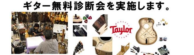 Taylor Guitars無料診断会