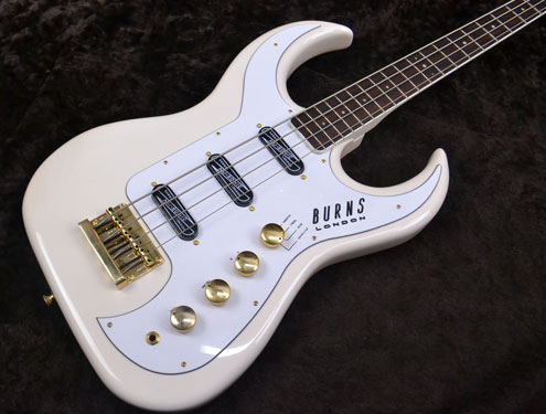 bison bass body