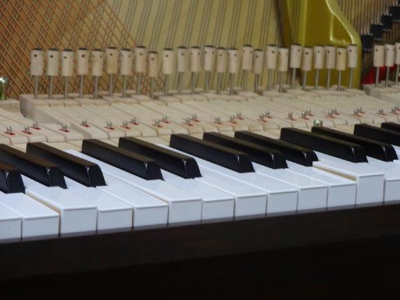 pianokaitaisyo8