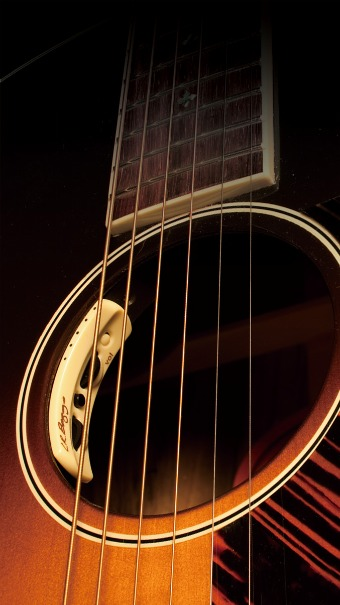 エルアールバッグスピックアップアコースティックギター後付