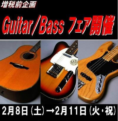 guitarfes