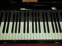 C3#5414903中音域鍵盤