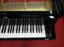 C3B#4780610高音部鍵盤