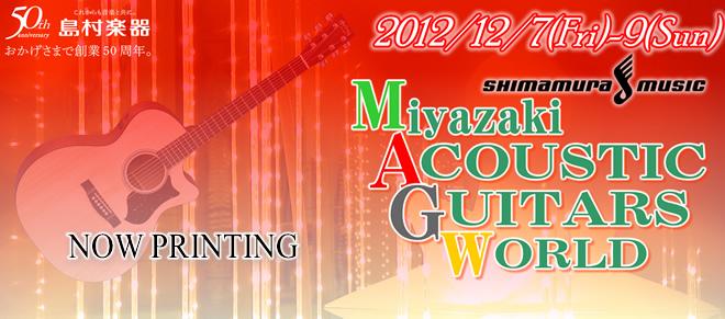 MiyazakiAcousticGuitarsWorld