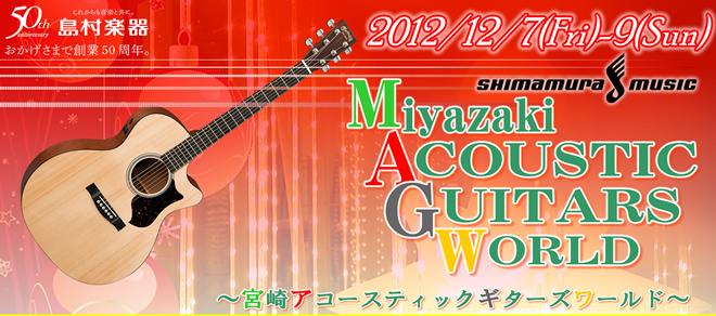 宮崎アコースティックギターズワールド