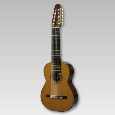10弦ギター