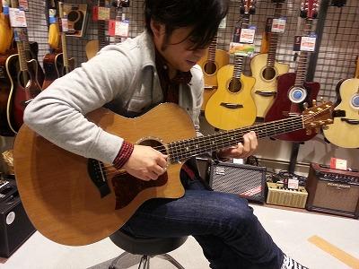 Taylor514ce 中村太一 島村楽器 ギター講師