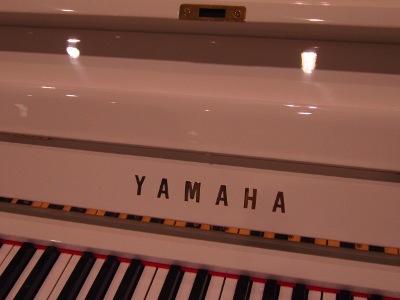 yamaha U3H ゴールド