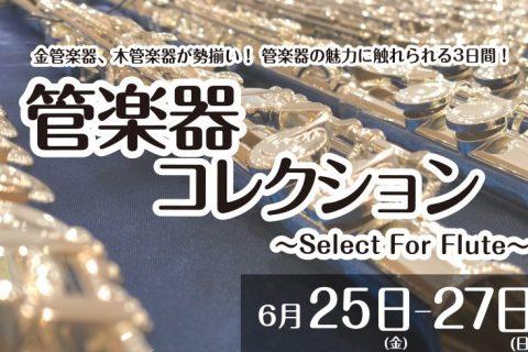 管楽器 コレクション フルート サックス クラリネット イオンカード 10倍