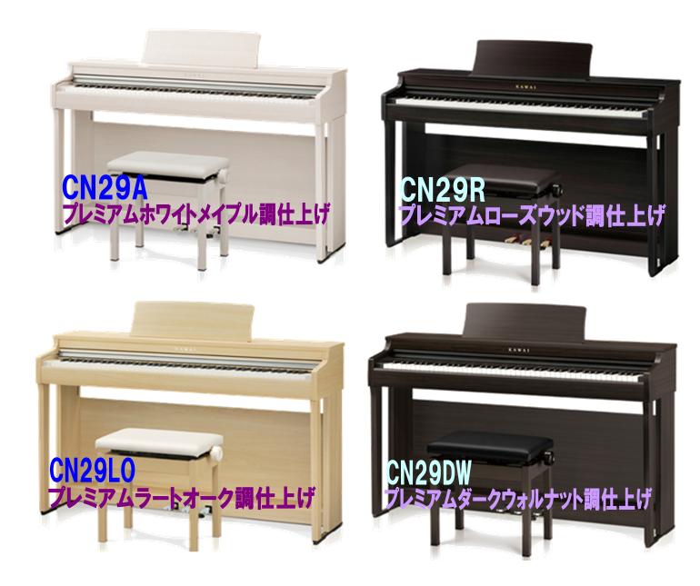 島村楽器イオンモール浜松市野店CN29