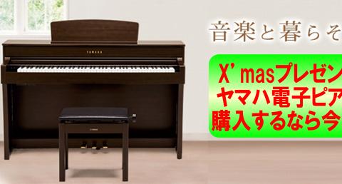 島村楽器イオンモール浜松市野店クラビノーバ