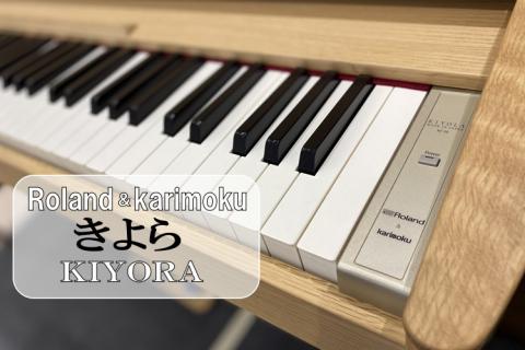 島村楽器イオンモール浜松市野店カリモク【KF-10】
