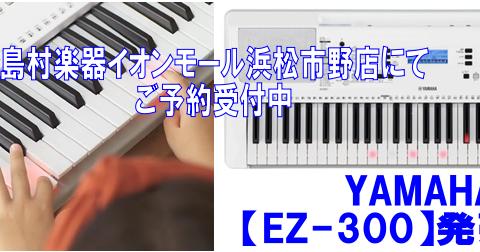 島村楽器イオンモール浜松市野店ヤマハキーボード【EZ-300】