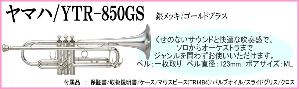 850GS
