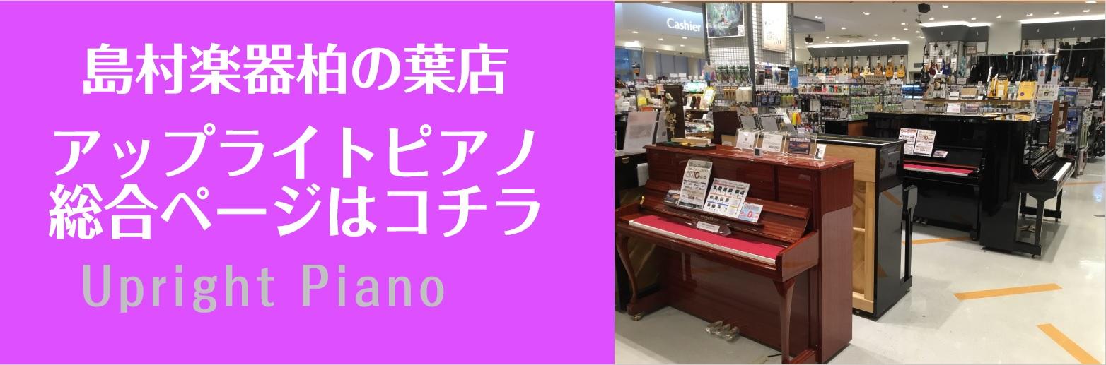 千葉 埼玉 茨城 東京 柏の葉 キーボード ピアノ ポータブルキーボード プレゼント 子ども お子様用 ららぽーと お孫さん 室内 手軽 軽い 持ち運び 柏 流山 オススメギフト キーボード YAMAHA CASIO KORG ヤマハ カシオ CT-X700