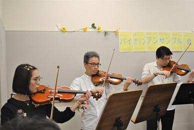 柏 流山 バイオリン