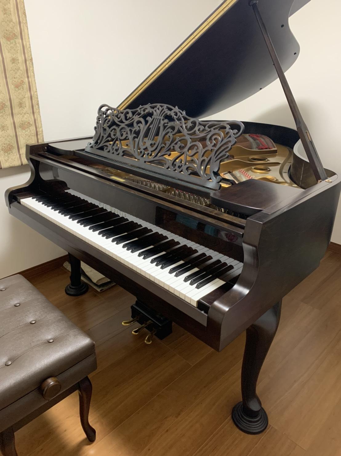 秋本 ピアノ