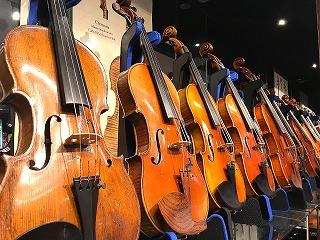 中古楽器からモダンヴァイオリンまで、常時30~40本を展示しております