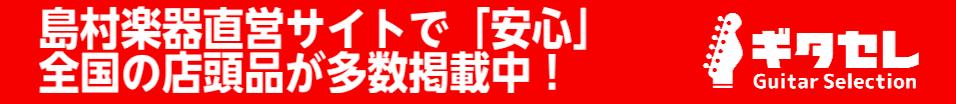 島村楽器オンラインショッピングサイト ギタセレ