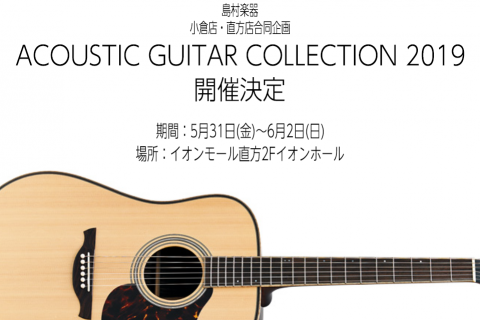 Acoustic guitar collection2019