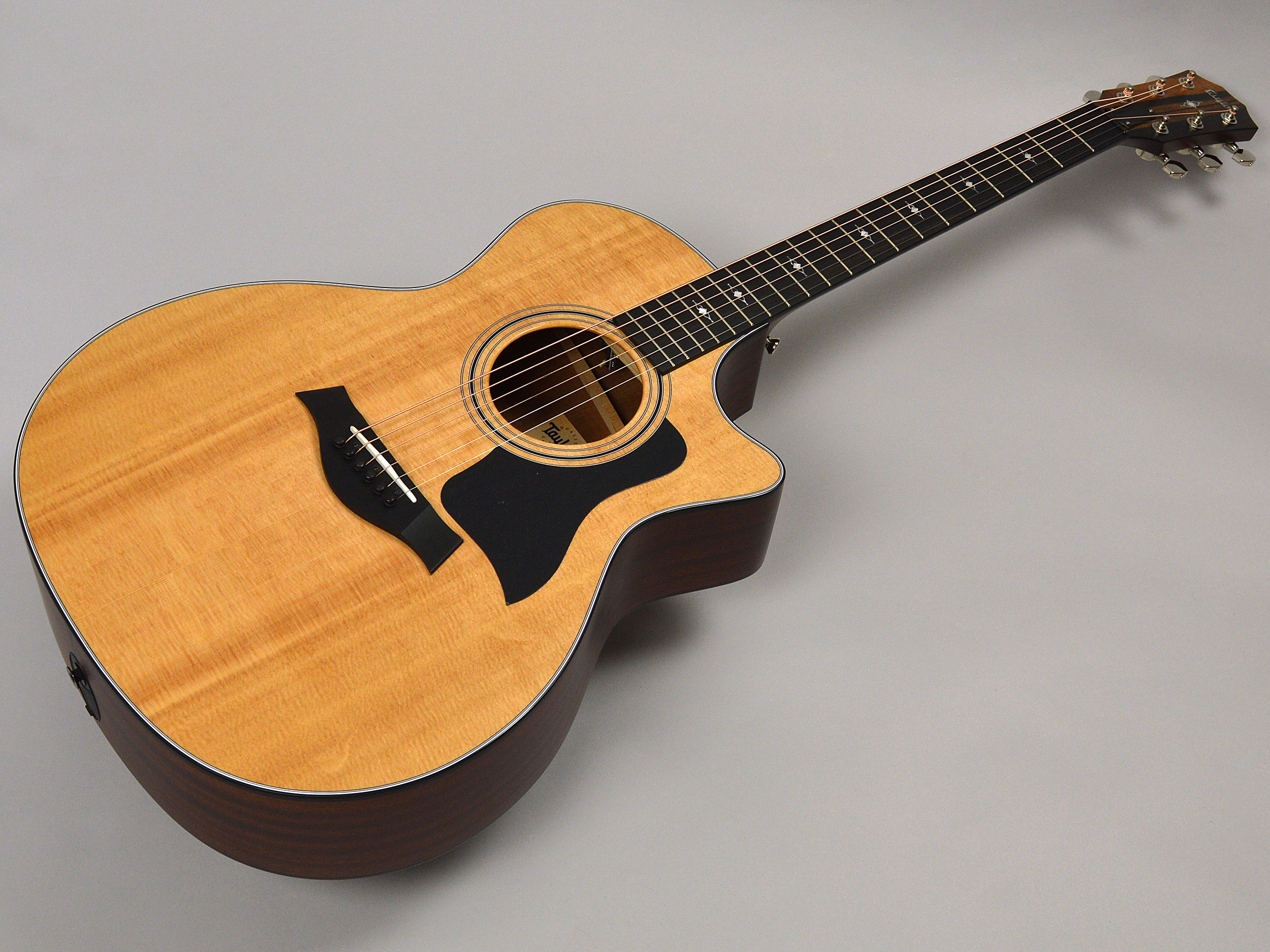 Taylor 314ce V-Classトップ画像