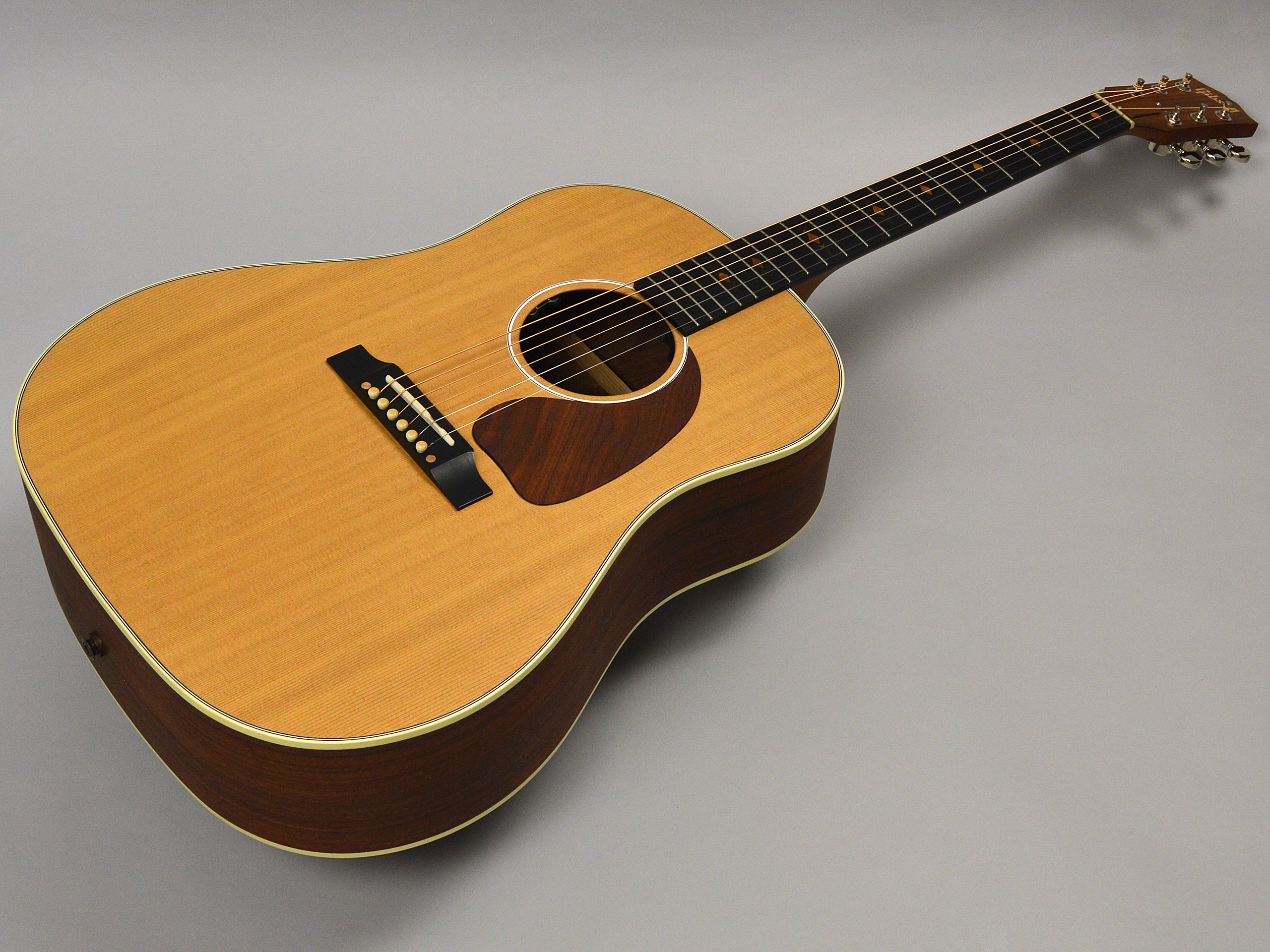 Gibson J-45 Sustainableトップ画像