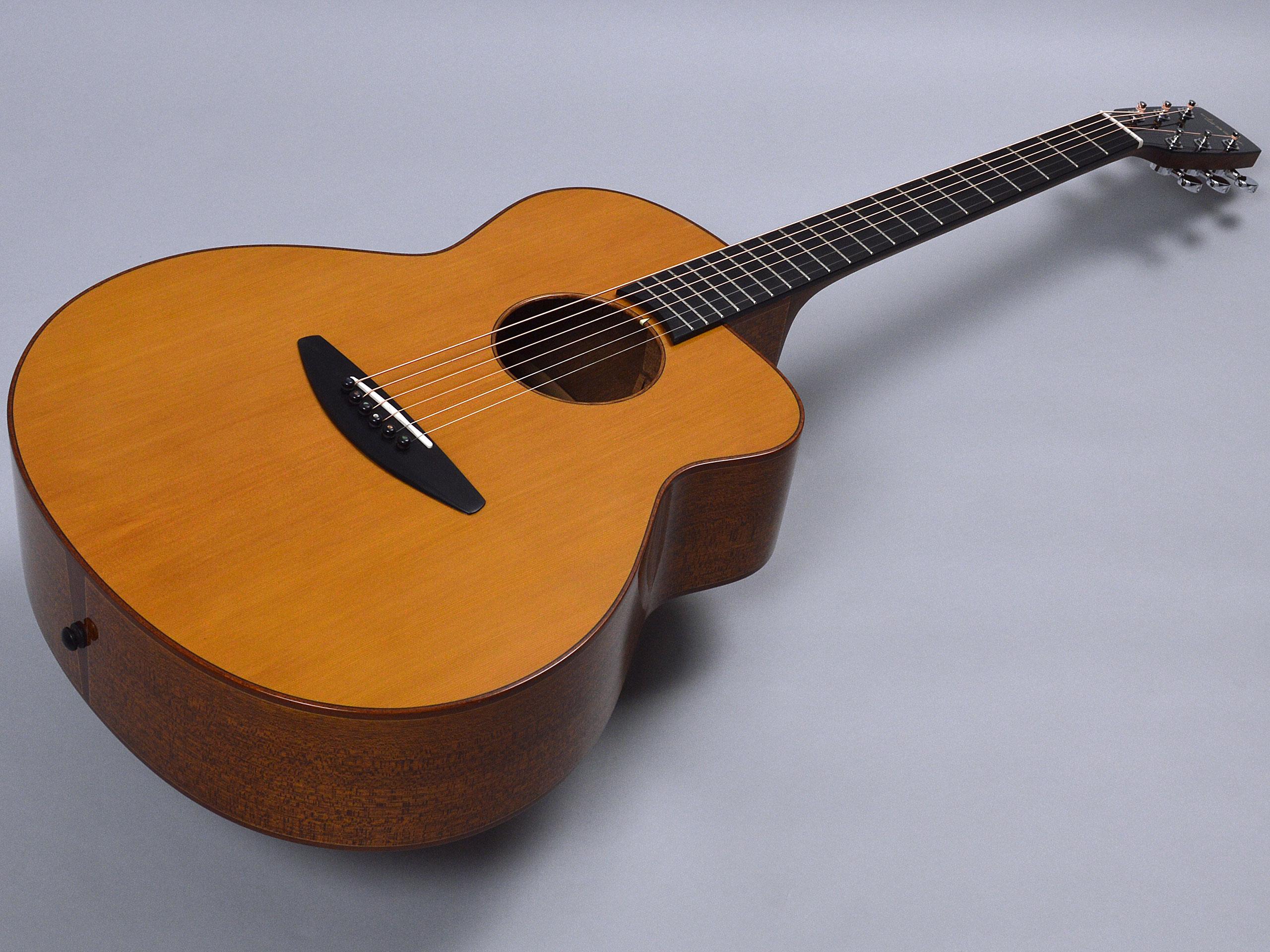 baden guitars A-style CZトップ画像