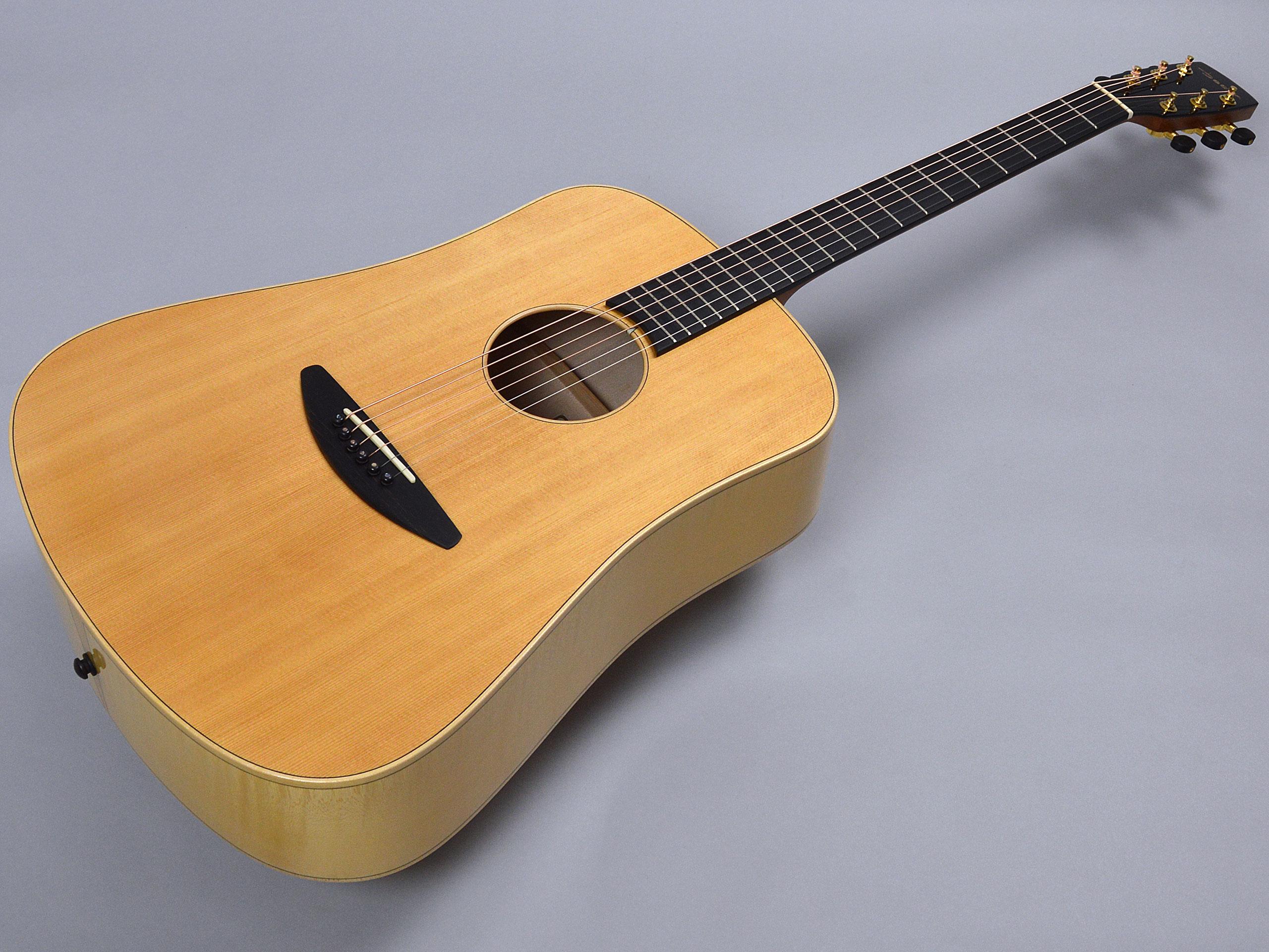 baden guitars D-style SFトップ画像