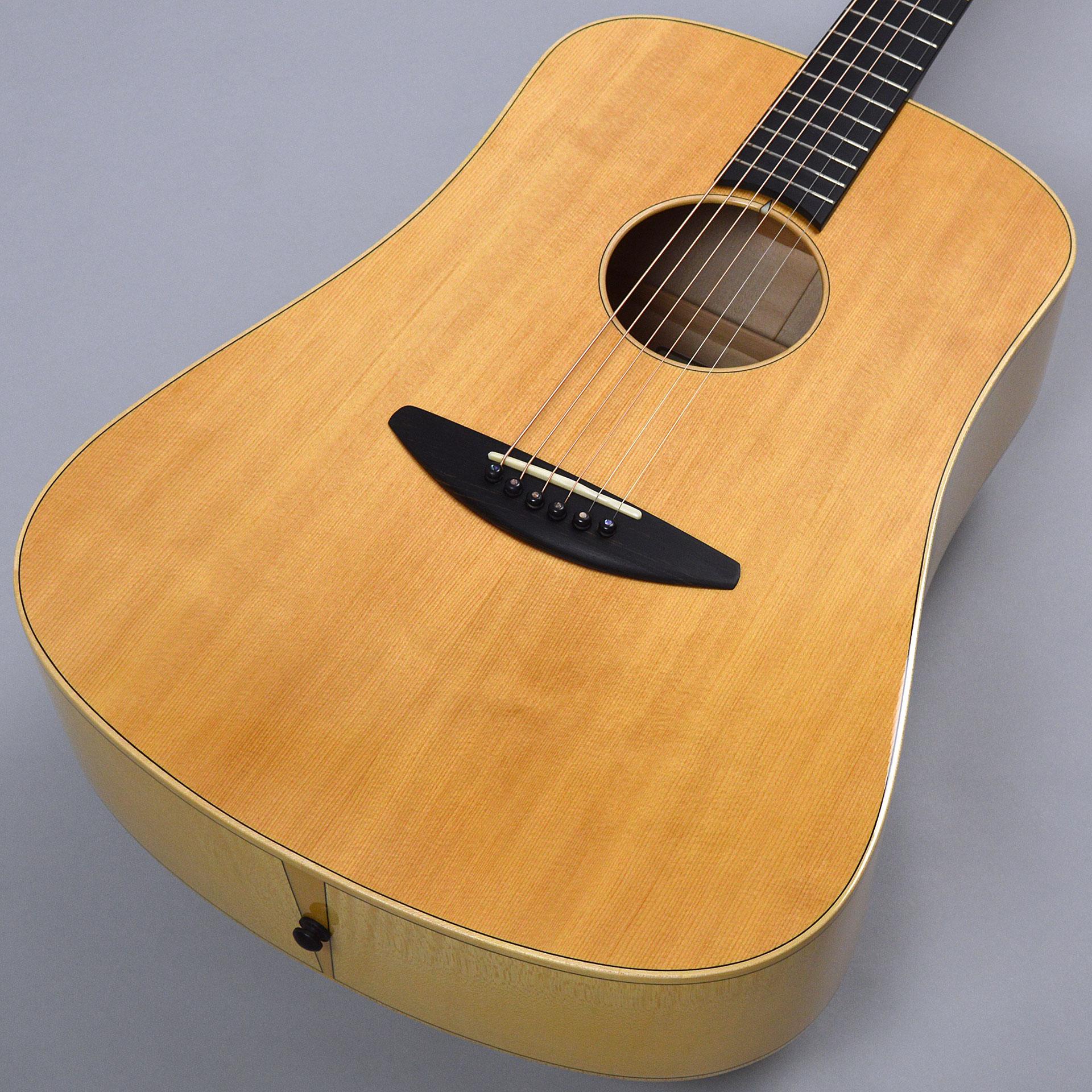 baden guitars D-style SFサムネ画像