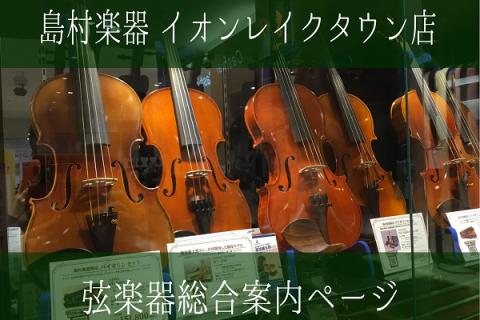 埼玉 越谷 バイオリン