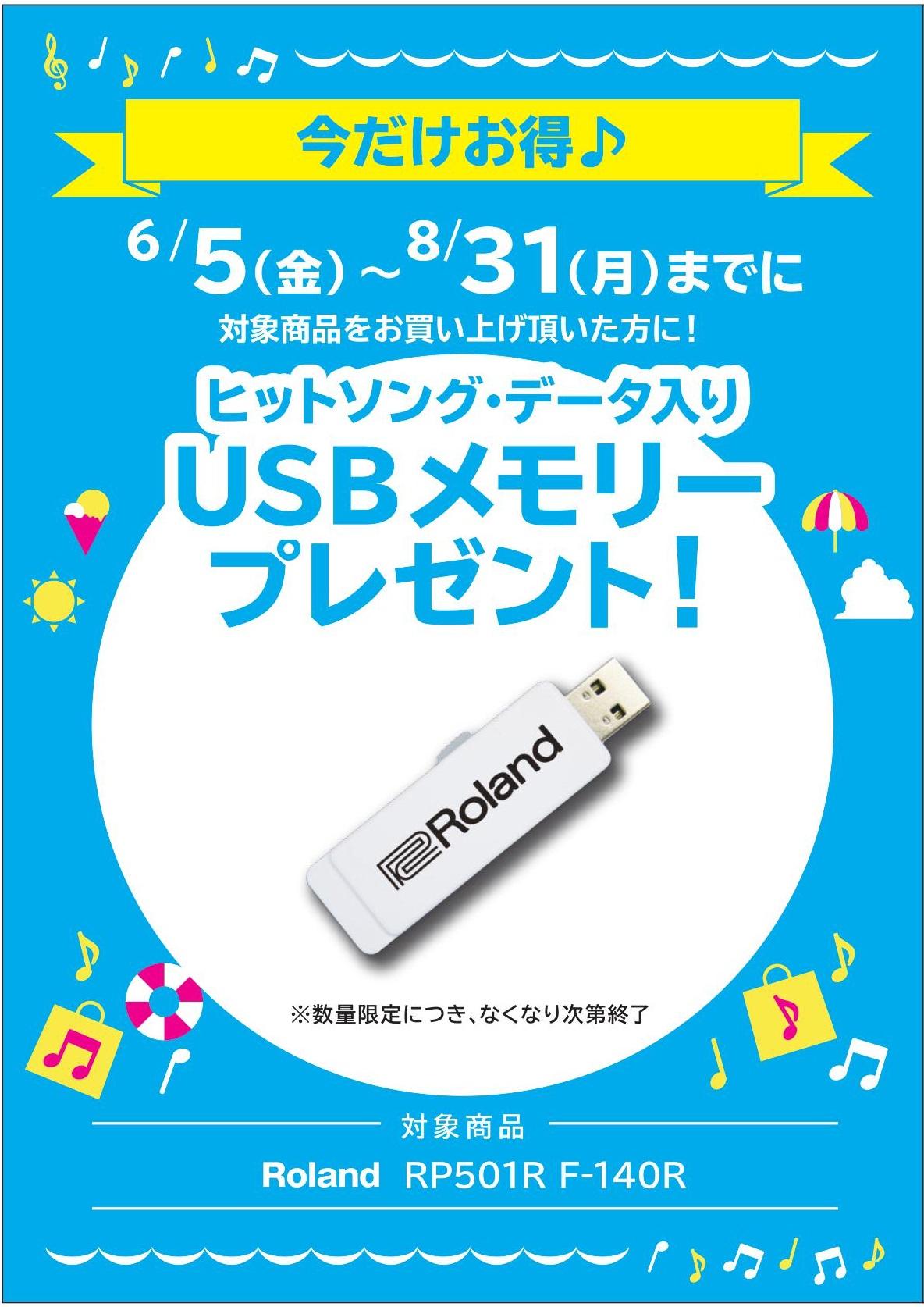 USBメモリー プレゼント RP501R