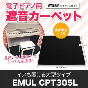 CPT305L MW